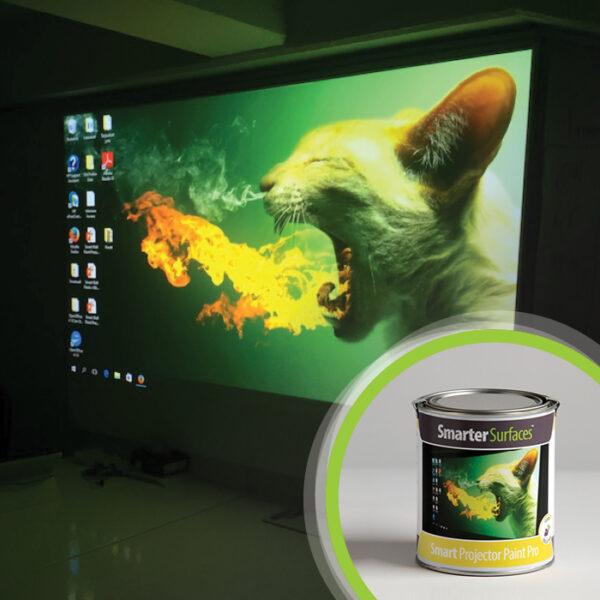 Profesionalna barva za steno projektor.